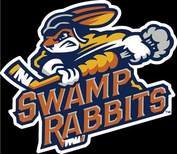 Chiropractic Greenville SC Swamp Rabbits Official Chiropractor